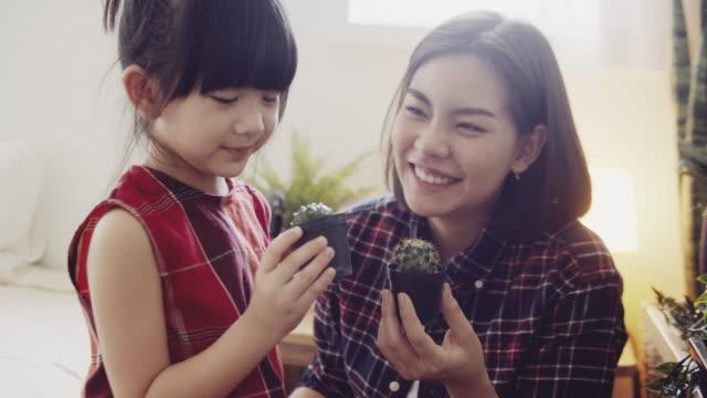 vidéos et rushes de jeune mère et descendant plantant le cactus dans la salle. - cactus pot