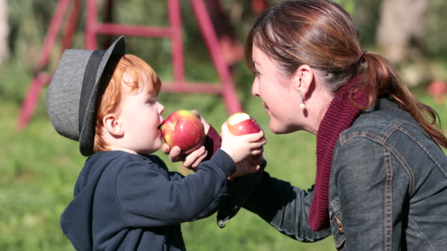 Young Mother and her Son Picking Apples and having fun in Orchard, Quebec, Canada