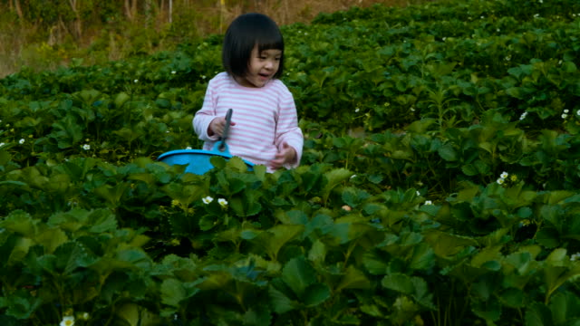 young mother teaches her little daughter - fragola video stock e b–roll