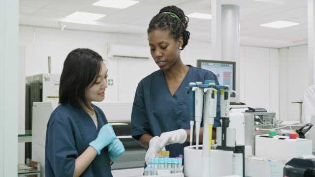 young pathology woman showing colleague organizing blood samples in lab - blood test stock videos & royalty-free footage