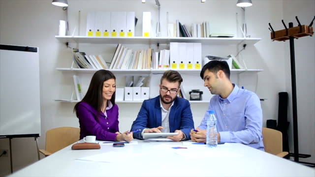 Young Professionals Discussing Ideas at a Meeting