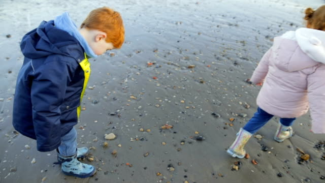 young redhead child finding a rock on the beach - scoperta video stock e b–roll