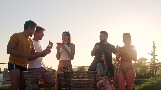 young relaxed friends enjoying beer and watermelon on patio - 20 29 years stock videos & royalty-free footage