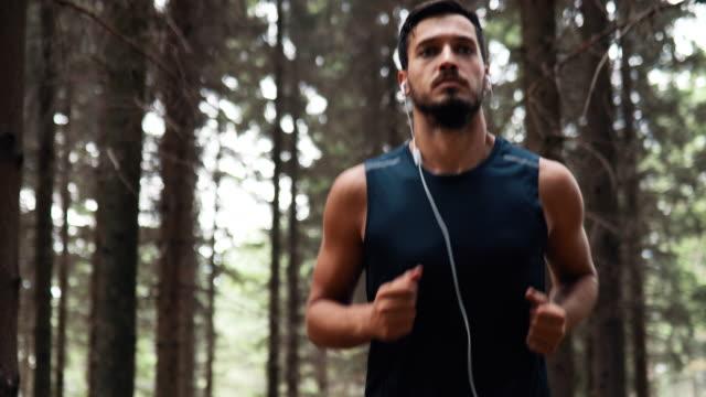 junger sportlicher läufer beim training im wald - naturwald stock-videos und b-roll-filmmaterial