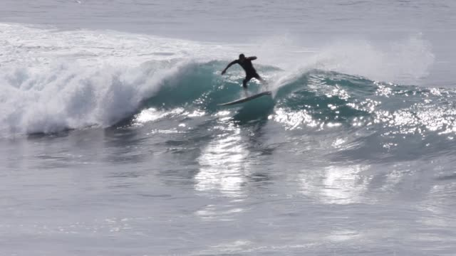 young surfer on wave, sunny day, backlit - wetsuit stock videos & royalty-free footage