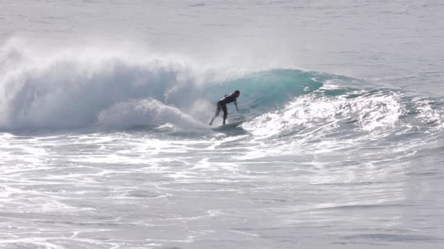 Young surfer on wave, sunny day, backlit