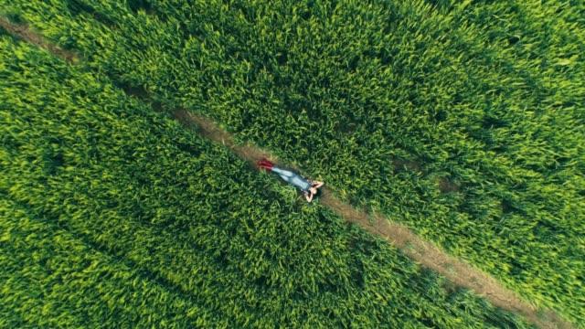 vídeos y material grabado en eventos de stock de agricultor joven adolescente relajante, poniendo en el campo de trigo verde, rural, tiempo real - grano planta