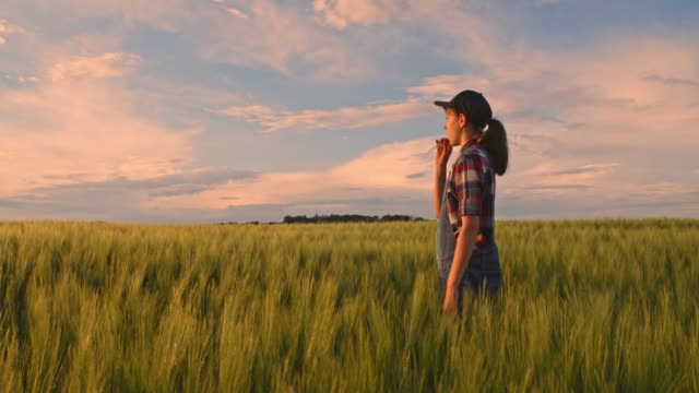 Young teenage girl farmer walking in tranquil,idyllic,rural green wheat field,slow motion