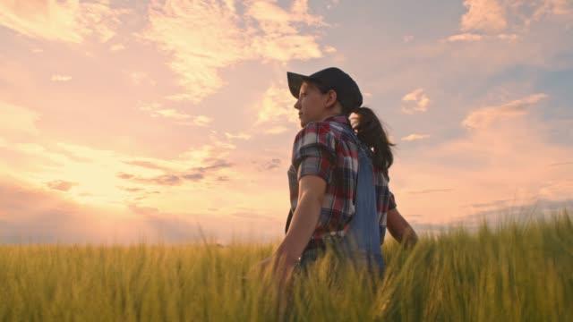 young teenage girl farmer walking,touching rural green wheat crop,slow motion - organic farm stock videos & royalty-free footage