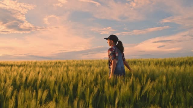 Young teenage girl walking in tranquil,idyllic,rural green wheat field,slow motion