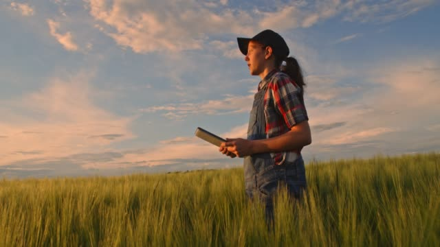 Young teenage girl with digital tablet in sunny,rural green wheat field,slow motion