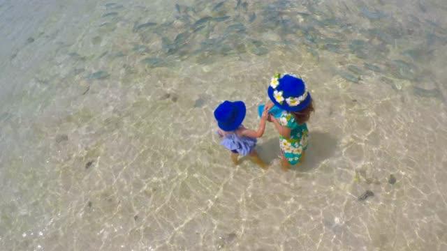 young tourist girls feeding tropical fish in rarotonga cook islands - rarotonga stock videos & royalty-free footage