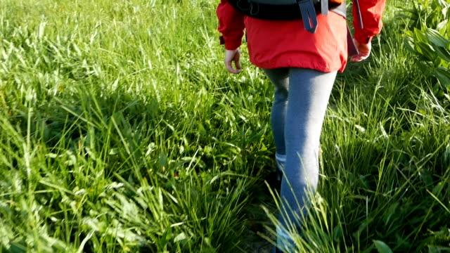 vídeos y material grabado en eventos de stock de un joven turista caminando por un sendero de montaña. - paso largo
