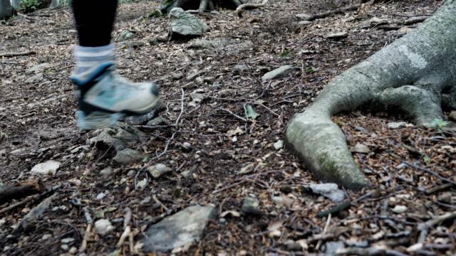 vídeos y material grabado en eventos de stock de una mujer joven turista caminando por un sendero de montaña - paso largo