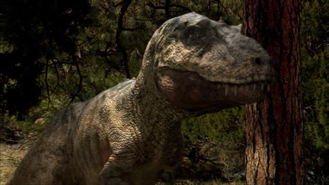 a young tyrannosaurus stands next to a tree. - dinosaur stock videos & royalty-free footage