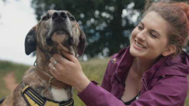 young woman affectionately pets her dog - pets stock videos & royalty-free footage
