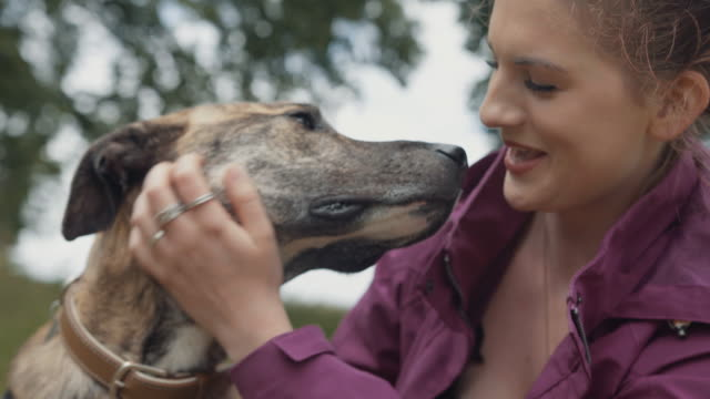 young woman affectionately pets her dog - care stock videos & royalty-free footage