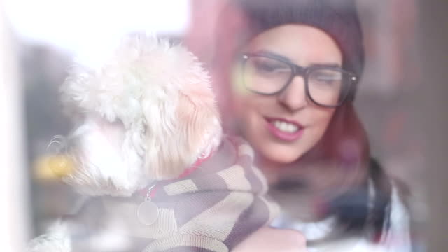 young woman and a dog looking through a window - pullover stock videos & royalty-free footage