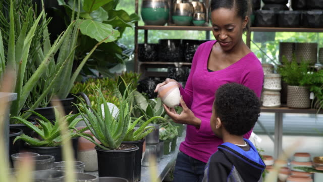 young woman and boy talking in a greenhouse - whidbey island shop stock videos and b-roll footage
