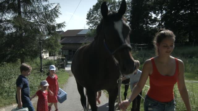 vídeos de stock, filmes e b-roll de young woman and chilrden walking with a brown horse through farm - short curto