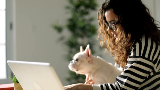 young woman and her dog using laptop at home - pet owner stock videos & royalty-free footage