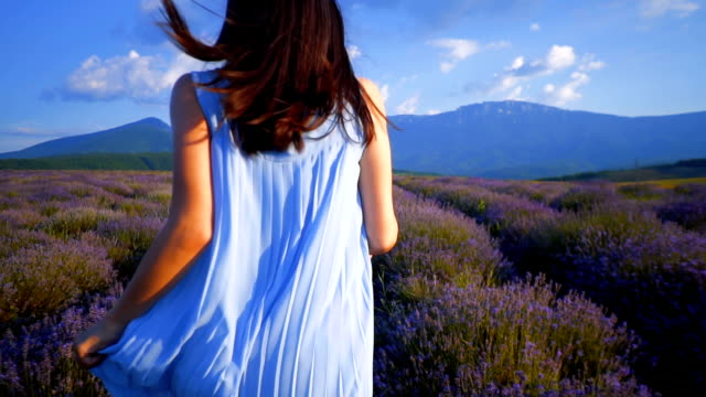 young woman at a lavender field - aromatherapy stock videos & royalty-free footage