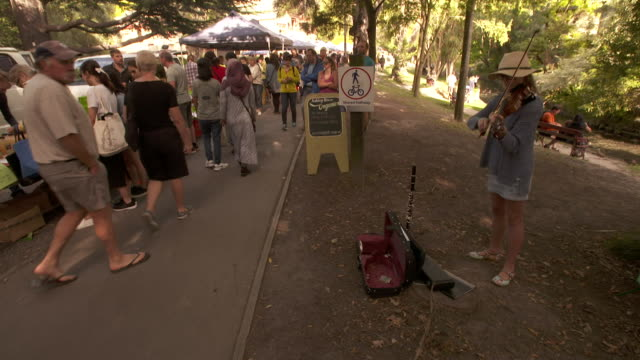 Young woman busking with violin at farmer's market