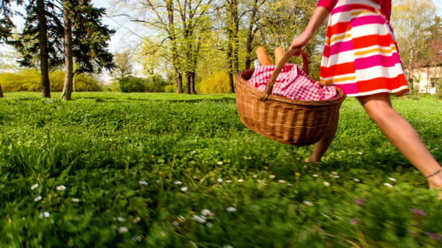 young woman carrying picnic baskets in park - picnic stock videos and b-roll footage