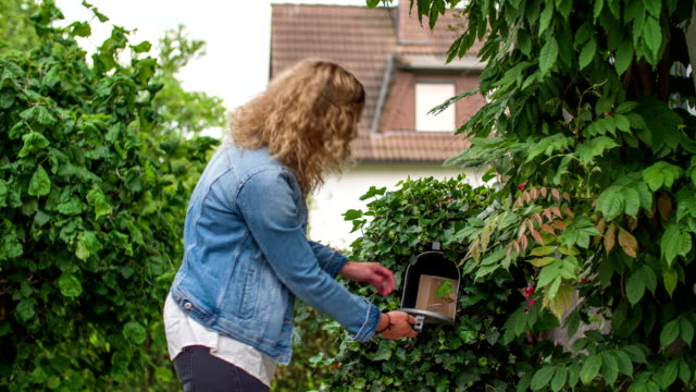 stockvideo's en b-roll-footage met young woman checking mail box - brievenbus huis
