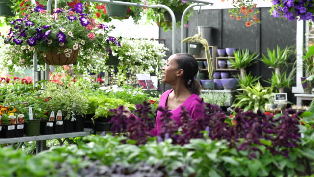 young woman checking on flowers in a greenhouse - whidbey island点の映像素材/bロール