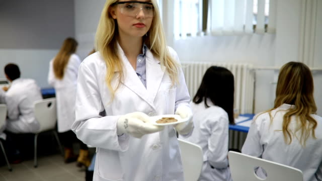 Young Woman, Chemistry Student Carrying Pellet To Examining