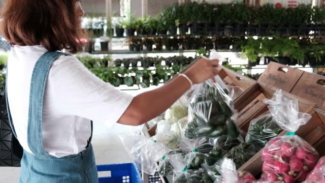 vídeos y material grabado en eventos de stock de mujer joven elige verduras en la tienda - calabaza no comestible