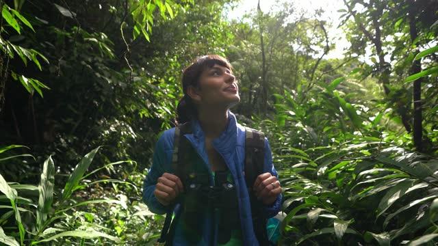 vídeos de stock, filmes e b-roll de jovem contemplando enquanto caminhava em uma floresta - ecoturismo