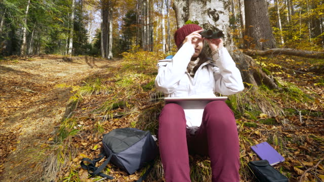 young woman doing research in the forest. - osservare gli uccelli video stock e b–roll