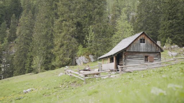オーストリアの山のピクニックベンチで緑のカブトムシを描く若い女性 - 山小屋点の映像素材/bロール