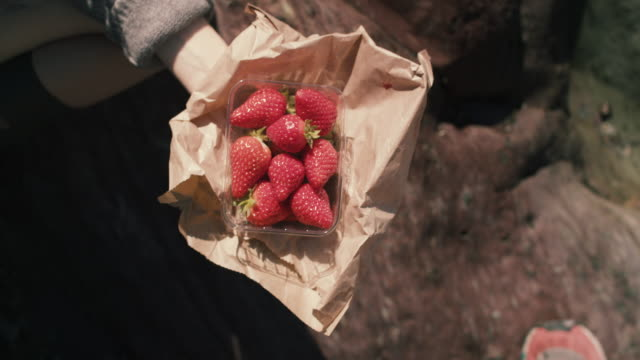 young woman eating strawberries - kingsand video stock e b–roll
