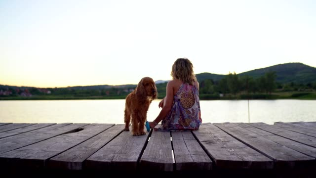 young woman enjoy sunset by the lake with her dog - dog walking stock videos & royalty-free footage