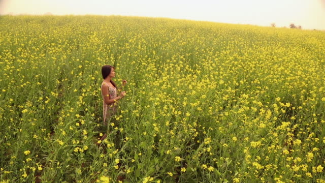 vídeos y material grabado en eventos de stock de young woman enjoying in the mustard field, haryana, india - haryana