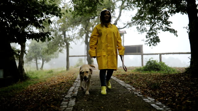 young woman enjoying rainy day with her dog - activity stock videos & royalty-free footage