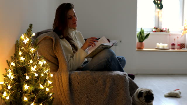 young woman enjoying reading the book near the christmas tree with her dog - small stock videos & royalty-free footage