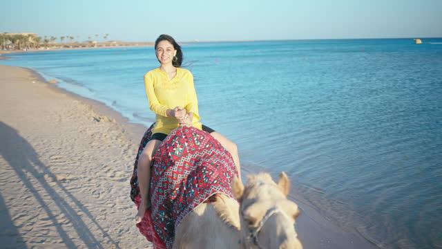 vídeos de stock e filmes b-roll de young woman enjoys camel riding on red sea coast wile late sunlight. - red sea