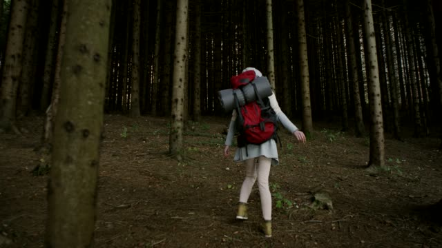 young woman exploring the forest - hoozone stock videos and b-roll footage