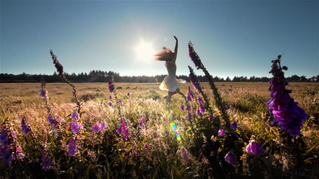 vidéos et rushes de young woman expressing joy in field of flowers, oregon - cheveux bruns