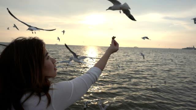 Young woman feeding seagulls on tropical beach in Thailand