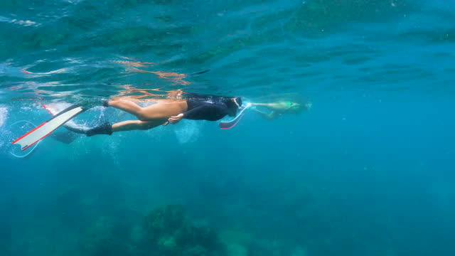 4k young woman free diver wear long fins freediving snorkeling in crystal clear water coral reef in the sea ocean - aqualung diving equipment stock videos & royalty-free footage