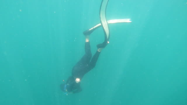 young woman free diving in sea - swimming costume stock videos and b-roll footage