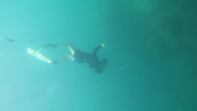 young woman free diving undersea - free diving stock videos & royalty-free footage