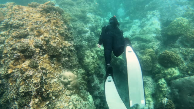 young woman freediving in deep sea - free diving stock videos & royalty-free footage