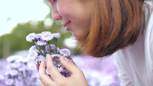 vídeos de stock, filmes e b-roll de jovem mulher felicidade e segurando uma flores roxas em suas mãos e cheirando as flores roxas no jardim de flores - cheirar