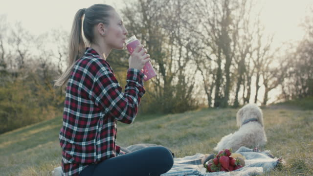 young woman having picnic on hill with dog, drinking water - reusable stock videos & royalty-free footage